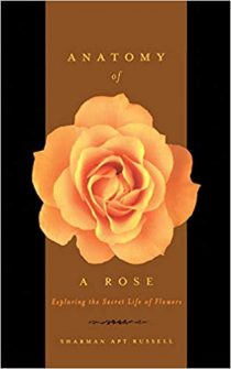 Anatomy of a Rose: The Secret Life of Flowers